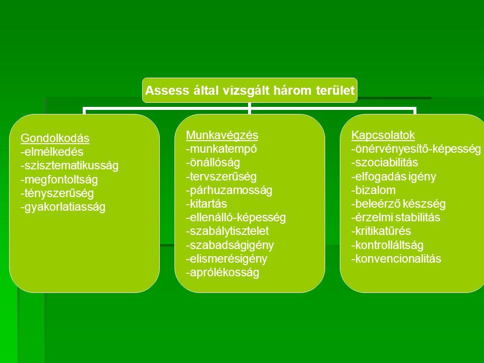 Assess által vizsgált három terület Gondolkodás -elmélkedés -szisztematikusság -megfontoltság -tényszerűség -gyakorlatiasság Munkavégzés -munkatempó -önállóság -tervszerűség -párhuzamosság -kitartás -ellenálló-képesség -szabálytisztelet -szabadságigény -elismerésigény -aprólékosság Kapcsolatok -önérvényesítő-képesség -szociabilitás -elfogadás igény -bizalom -beleérző készség -érzelmi stabilitás -kritikatűrés -kontrolláltság -konvencionalitás