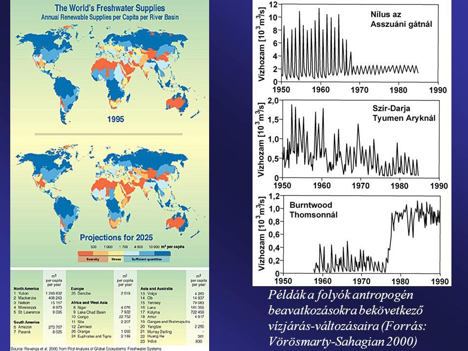 Példák a folyók antropogén beavatkozásokra bekövetkező vízjárás-változásaira (Forrás: Vörösmarty-Sahagian 2000)