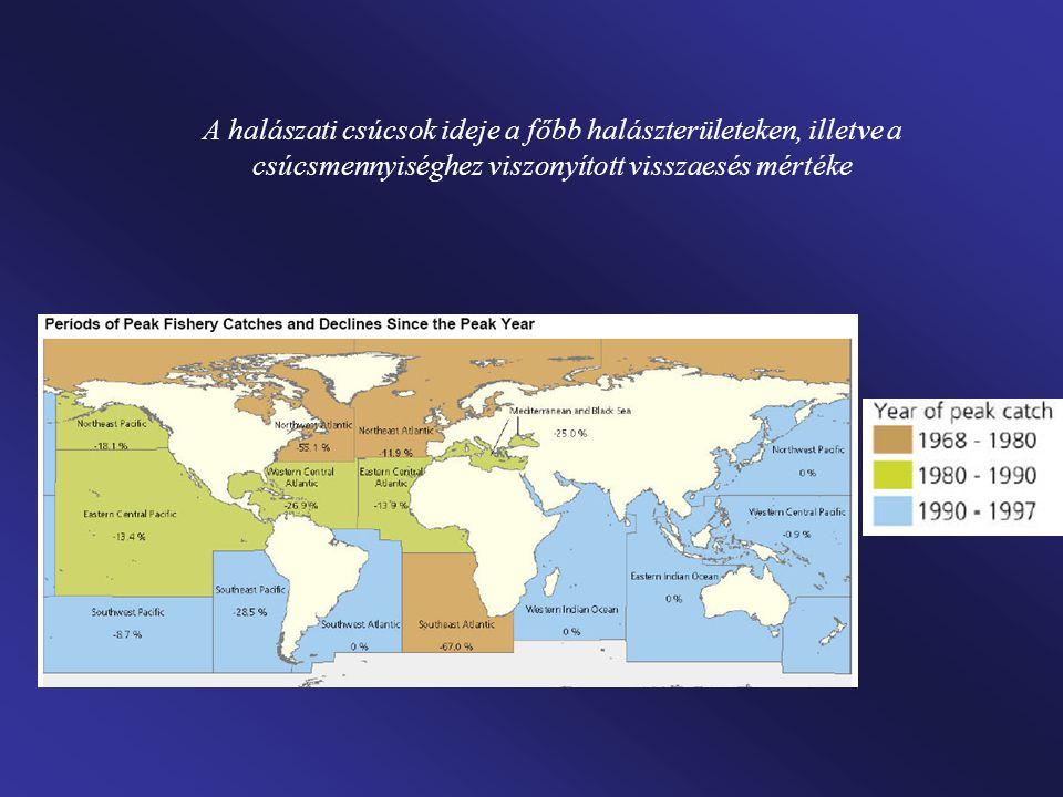 Példák a kritikus vízfelhasználású területekre 1.