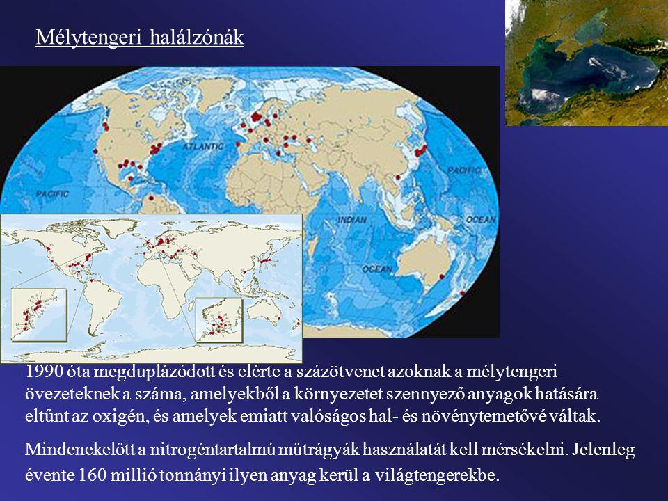Hatalmas mélytengeri halálzóna , az oxigénhiány miatt élettelen víztömeg alakult is idén nyáron is a Mexikói-öbölben.