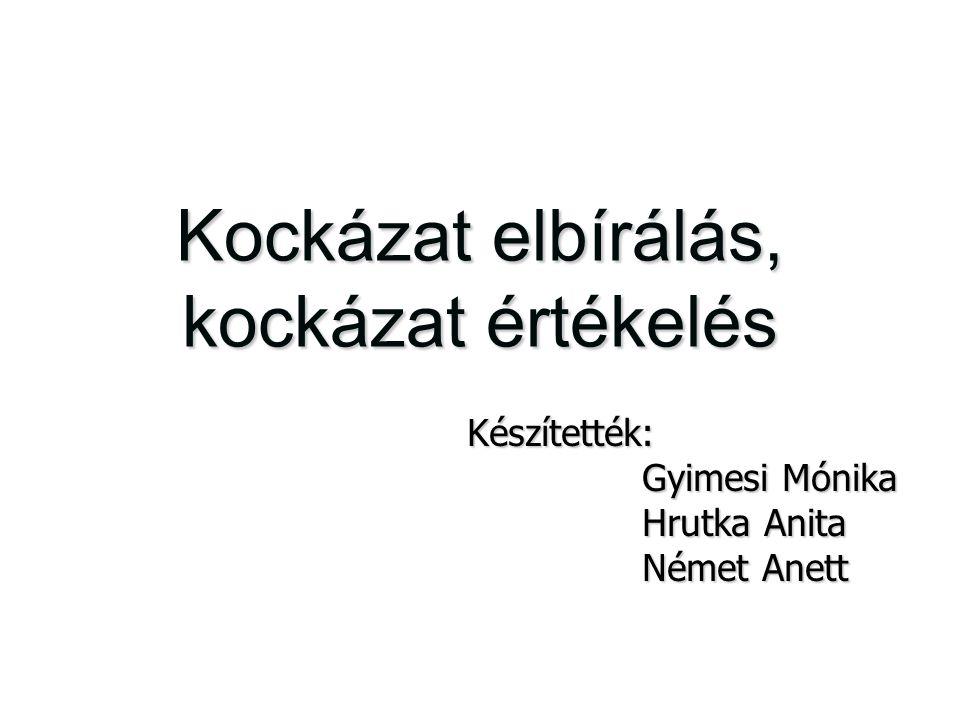Kockázat elbírálás, kockázat értékelés Készítették: Gyimesi Mónika Gyimesi Mónika Hrutka Anita Hrutka Anita Német Anett Német Anett