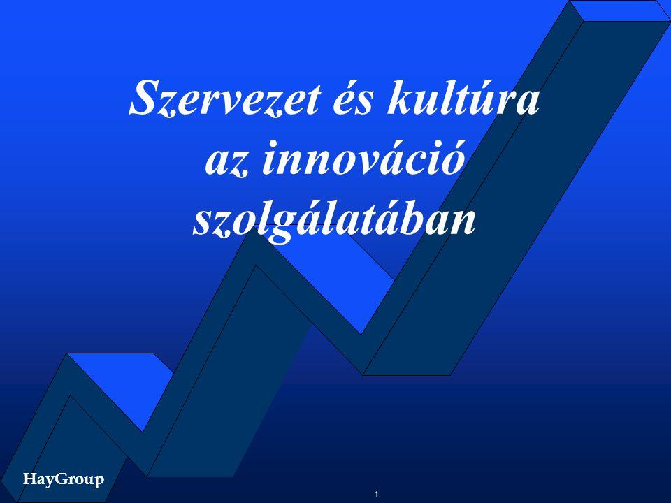 HayGroup 1 Szervezet és kultúra az innováció szolgálatában HayGroup
