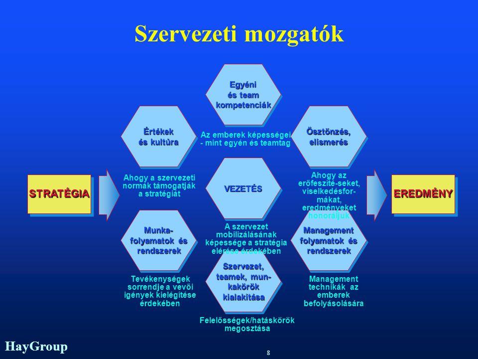 HayGroup 8 Szervezeti mozgatók Értékek és kultúra Értékek Munka- folyamatok és rendszerekMunka- rendszerek Egyéni és team kompetenciákEgyéni kompetenciák Szervezet, teamek, mun- kakörök kialakítása Szervezet, teamek, mun- kakörök kialakítása Ösztönzés,elismerésÖsztönzés,elismerés Management folyamatok és rendszerekManagement rendszerek VEZETÉSVEZETÉS Az emberek képességei - mint egyén és teamtag A szervezet mobilizálásának képessége a stratégia elérése érdekében Felelősségek/hatáskörök megosztása Ahogy az erőfeszíté-seket, viselkedésfor- mákat, eredményeket honoráljuk Management technikák az emberek befolyásolására Ahogy a szervezeti normák támogatják a stratégiát Tevékenységek sorrendje a vevői igények kielégítése érdekében EREDMÉNYEREDMÉNYSTRATÉGIASTRATÉGIA