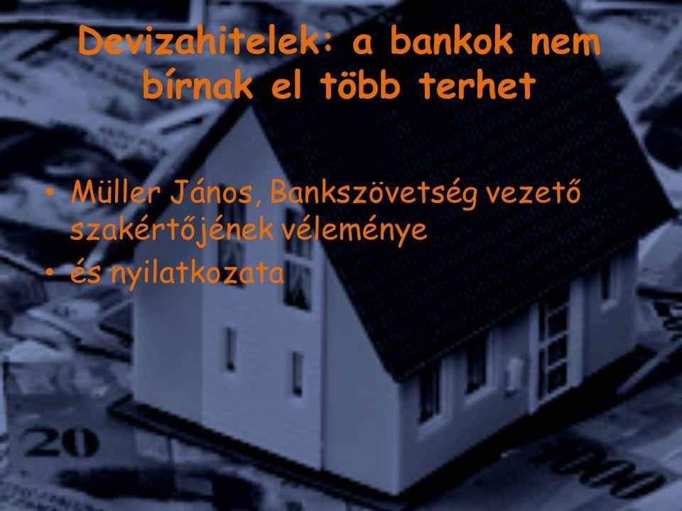Devizahitelek: a bankok nem bírnak el több terhet Müller János, Bankszövetség vezető szakértőjének véleménye és nyilatkozata