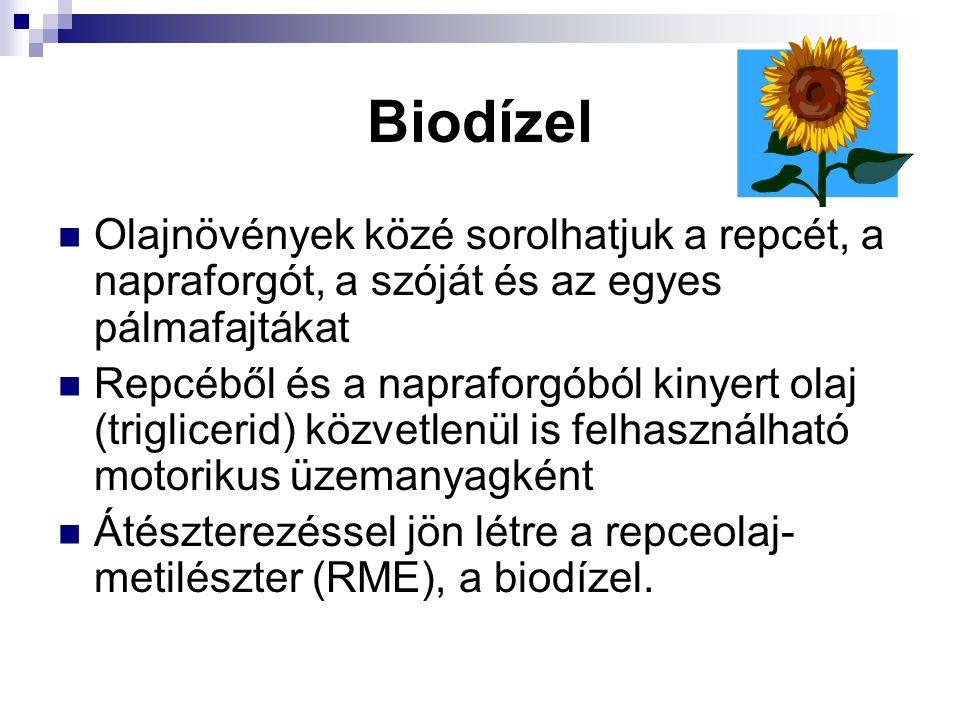 Biodízel Olajnövények közé sorolhatjuk a repcét, a napraforgót, a szóját és az egyes pálmafajtákat Repcéből és a napraforgóból kinyert olaj (triglicer