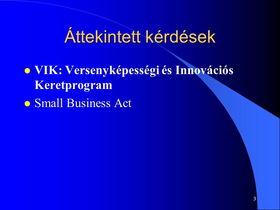 3 Áttekintett kérdések l VIK: Versenyképességi és Innovációs Keretprogram l Small Business Act