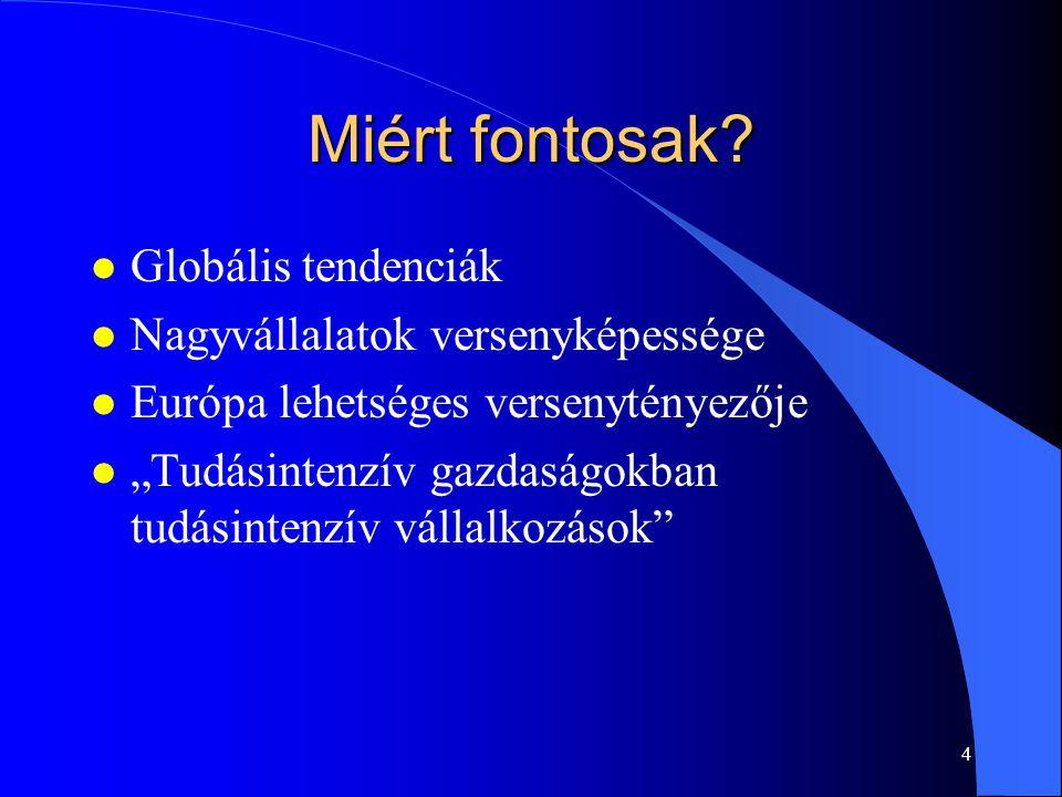 """4 Miért fontosak? l Globális tendenciák l Nagyvállalatok versenyképessége l Európa lehetséges versenytényezője l """"Tudásintenzív gazdaságokban tudásint"""