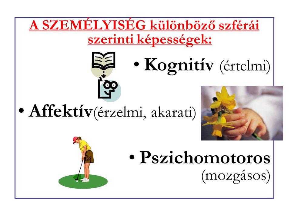 A SZEMÉLYISÉG különböző szférái szerinti képességek: Kognitív (értelmi) Affektív (érzelmi, akarati) Pszichomotoros (mozgásos)