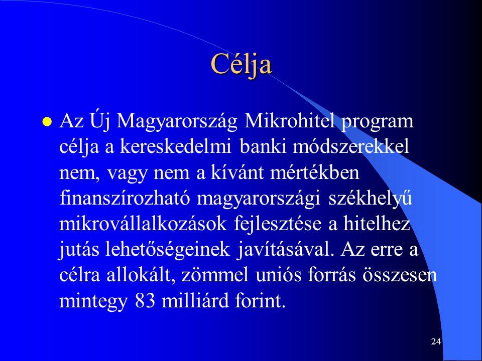 23 Koncepció Új Magyarország Mikrohitel 2009.04.09