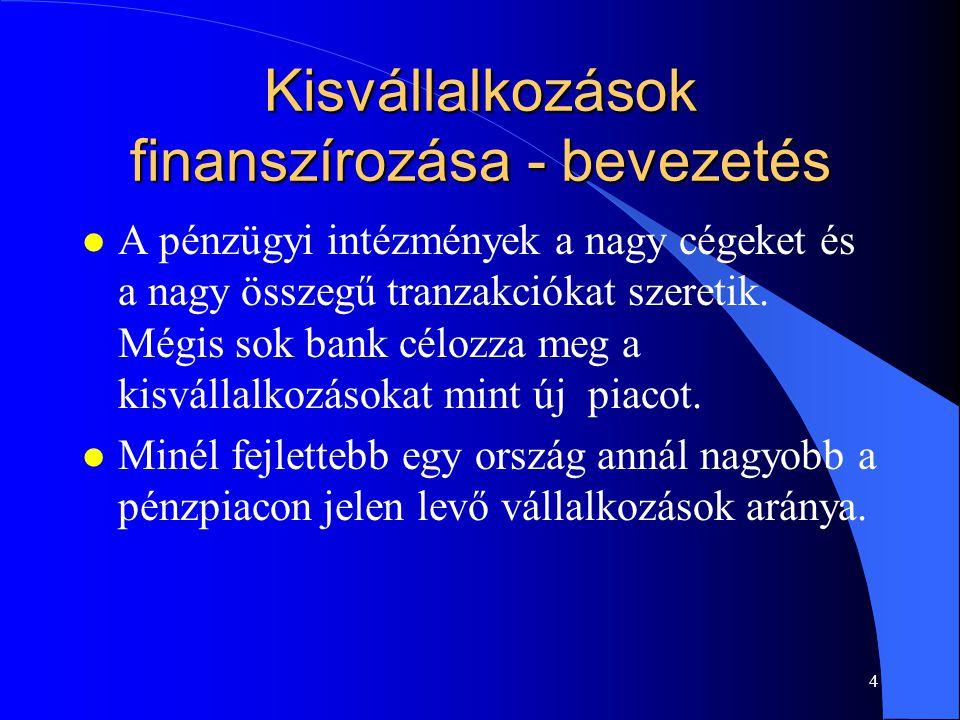3 A kisvállalkozások finanszírozási háttere