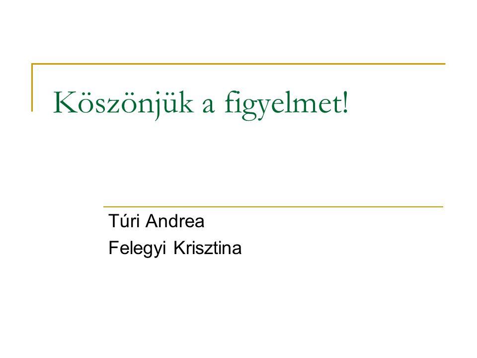 Köszönjük a figyelmet! Túri Andrea Felegyi Krisztina