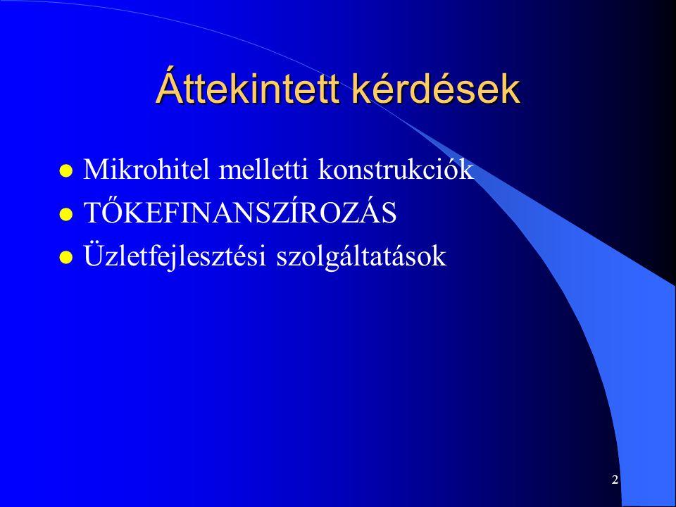 2 Áttekintett kérdések l Mikrohitel melletti konstrukciók l TŐKEFINANSZÍROZÁS l Üzletfejlesztési szolgáltatások
