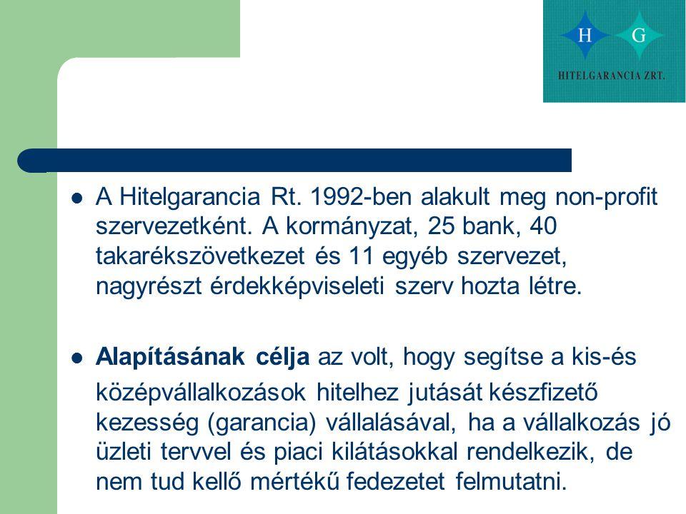 A Hitelgarancia Rt. 1992-ben alakult meg non-profit szervezetként. A kormányzat, 25 bank, 40 takarékszövetkezet és 11 egyéb szervezet, nagyrészt érdek