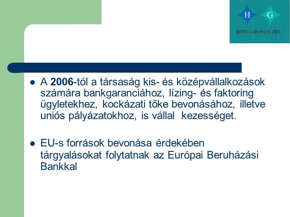 A 2006-tól a társaság kis- és középvállalkozások számára bankgaranciához, lízing- és faktoring ügyletekhez, kockázati tőke bevonásához, illetve uniós pályázatokhoz, is vállal kezességet.
