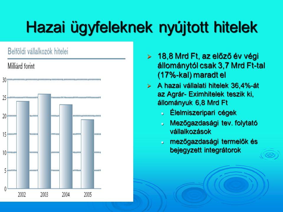 Hazai ügyfeleknek nyújtott hitelek  18,8 Mrd Ft, az előző év végi állománytól csak 3,7 Mrd Ft-tal (17%-kal) maradt el  A hazai vállalati hitelek 36,