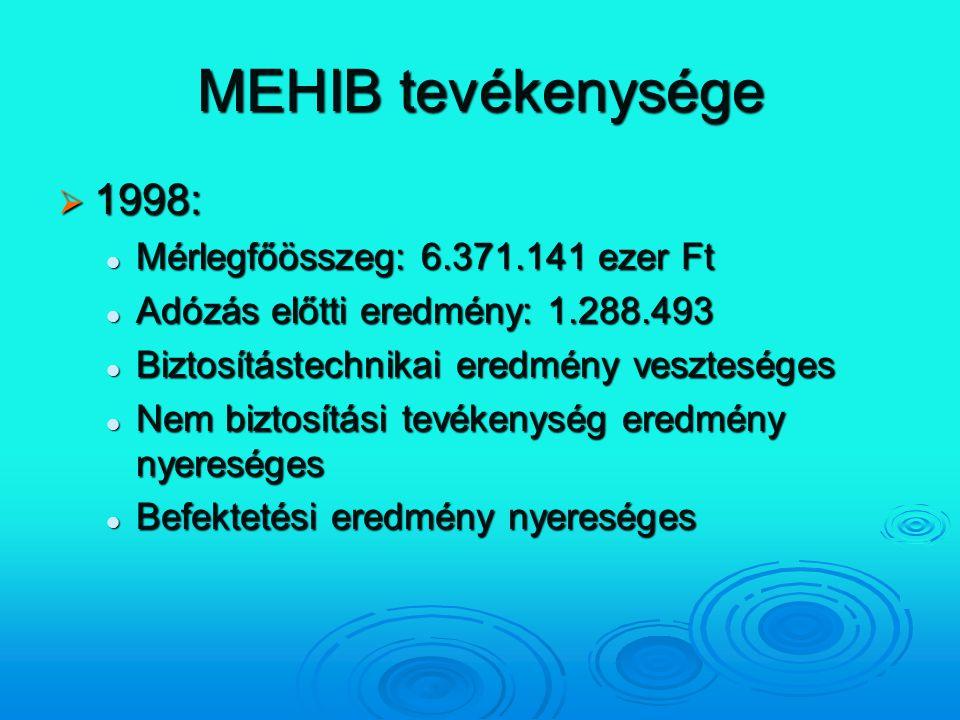 MEHIB tevékenysége  1998: Mérlegfőösszeg: 6.371.141 ezer Ft Mérlegfőösszeg: 6.371.141 ezer Ft Adózás előtti eredmény: 1.288.493 Adózás előtti eredmén