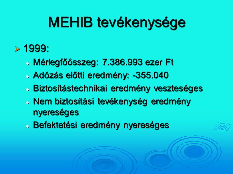 MEHIB tevékenysége  1999: Mérlegfőösszeg: 7.386.993 ezer Ft Mérlegfőösszeg: 7.386.993 ezer Ft Adózás előtti eredmény: -355.040 Adózás előtti eredmény