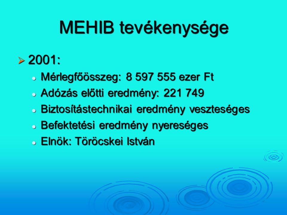 MEHIB tevékenysége  2001: Mérlegfőösszeg: 8 597 555 ezer Ft Mérlegfőösszeg: 8 597 555 ezer Ft Adózás előtti eredmény: 221 749 Adózás előtti eredmény: