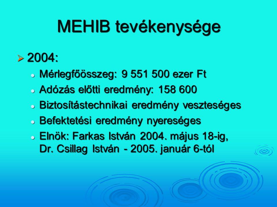 MEHIB tevékenysége  2004: Mérlegfőösszeg: 9 551 500 ezer Ft Mérlegfőösszeg: 9 551 500 ezer Ft Adózás előtti eredmény: 158 600 Adózás előtti eredmény: