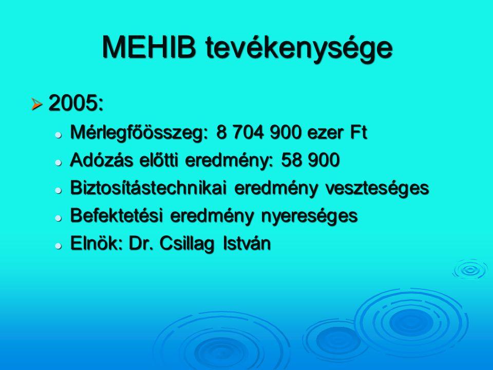 MEHIB tevékenysége  2005: Mérlegfőösszeg: 8 704 900 ezer Ft Mérlegfőösszeg: 8 704 900 ezer Ft Adózás előtti eredmény: 58 900 Adózás előtti eredmény: