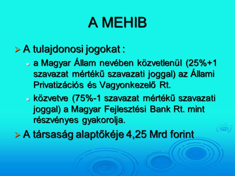 A MEHIB  A tulajdonosi jogokat : a Magyar Állam nevében közvetlenül (25%+1 szavazat mértékű szavazati joggal) az Állami Privatizációs és Vagyonkezelő