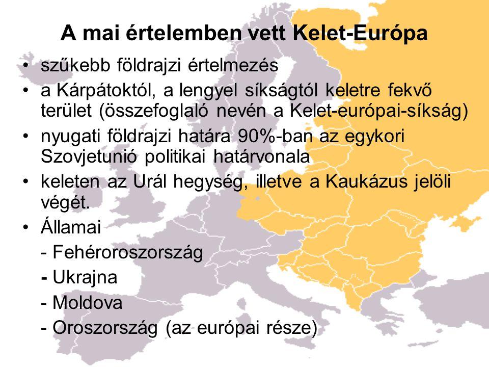 A mai értelemben vett Kelet-Európa szűkebb földrajzi értelmezés a Kárpátoktól, a lengyel síkságtól keletre fekvő terület (összefoglaló nevén a Kelet-európai-síkság) nyugati földrajzi határa 90%-ban az egykori Szovjetunió politikai határvonala keleten az Urál hegység, illetve a Kaukázus jelöli végét.