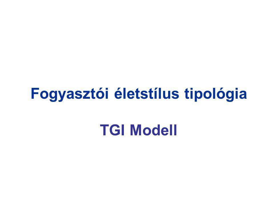 Fogyasztói életstílus tipológia TGI Modell