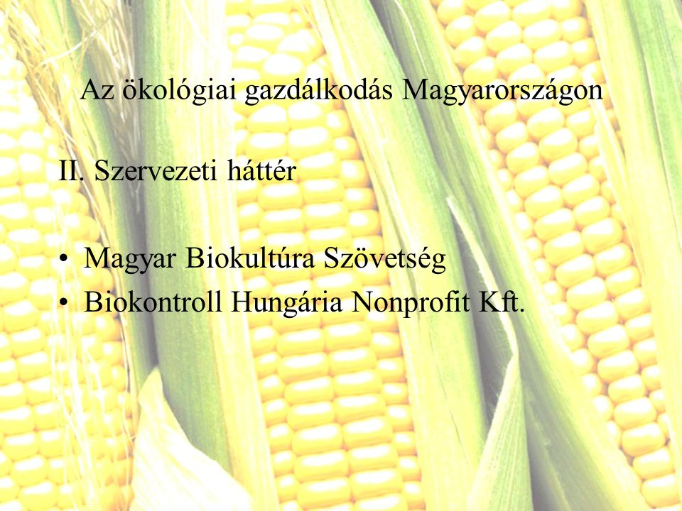 Magyar Biokultúra Szövetség 1983-ban Klubként indult 1987-től Biokultúra Egyesület Jelenleg 13 jogi személyiségű tag Céljai: biotermékek minél szélesebb körű fogyasztása és egészséges életmód propagálása