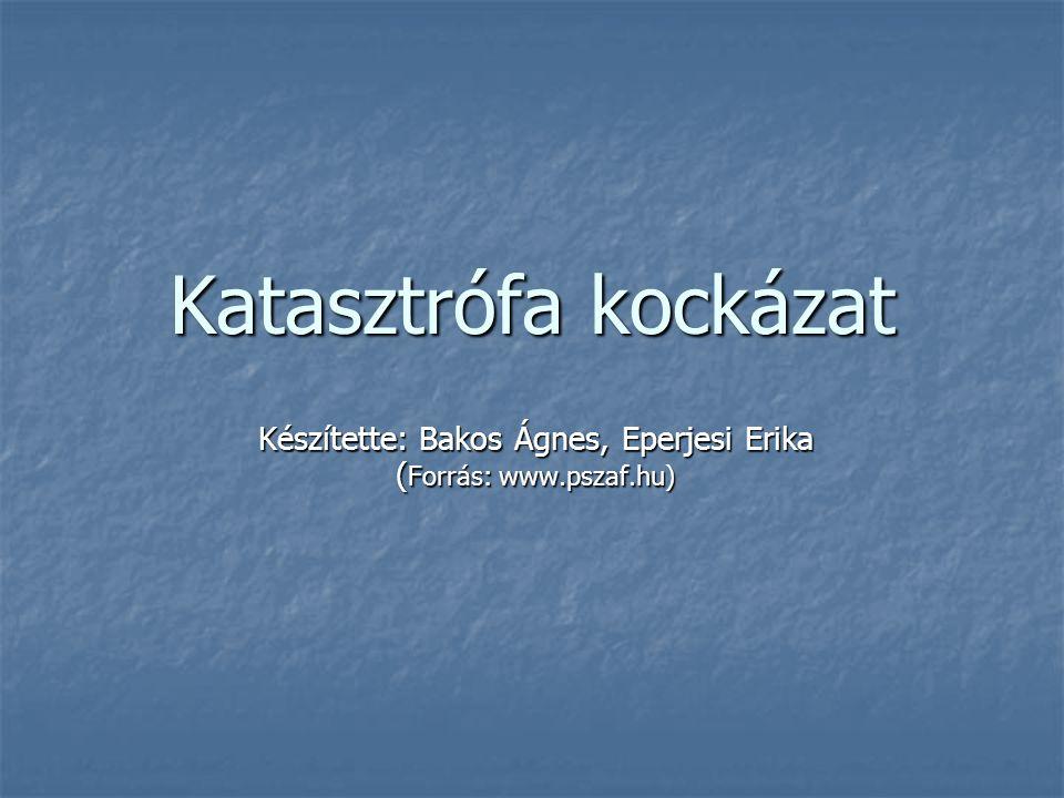 Katasztrófa kockázat Készítette: Bakos Ágnes, Eperjesi Erika ( Forrás: www.pszaf.hu)