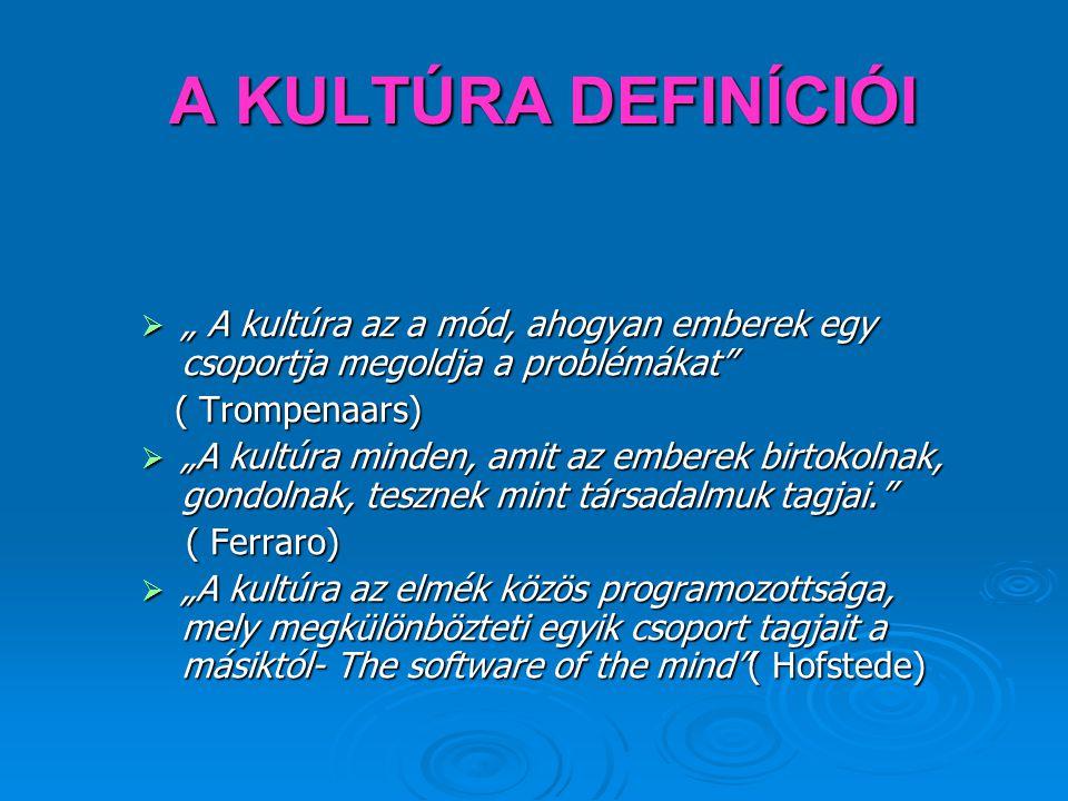 """Definíció Az Interkultúrális menedzsment """"embereknek az irányítással és munkával kapcsolatos magatartásában jelentkező, kultúrától függő eltéréseivel foglalkozik. (REFA, 2002) Az Interkultúrális menedzsment """"embereknek az irányítással és munkával kapcsolatos magatartásában jelentkező, kultúrától függő eltéréseivel foglalkozik. (REFA, 2002)"""