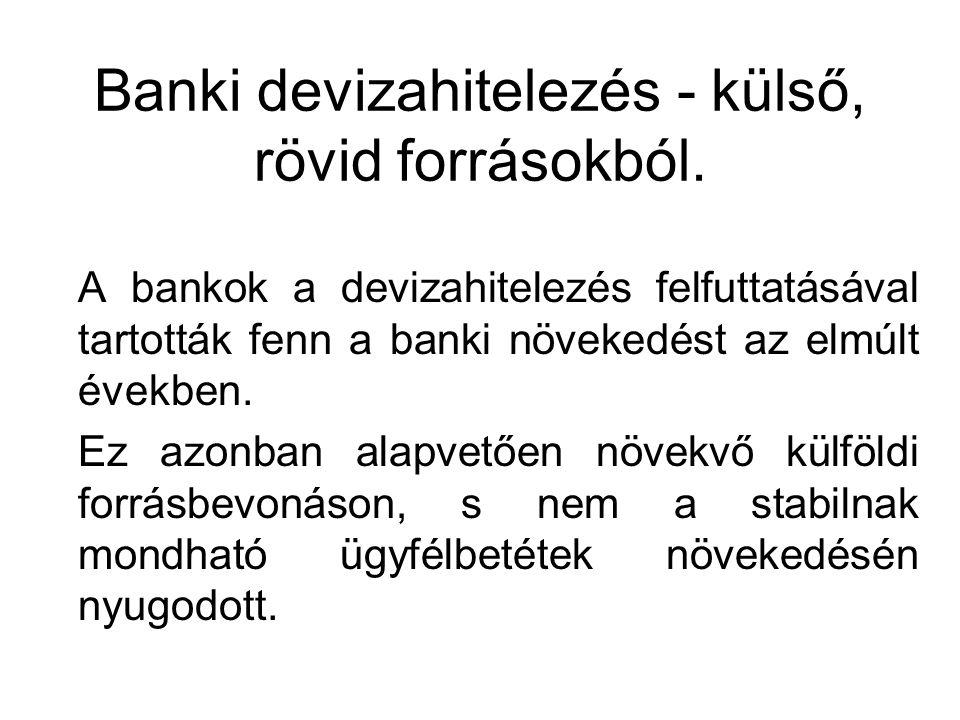 A bankok a devizahitelezés felfuttatásával tartották fenn a banki növekedést az elmúlt években. Ez azonban alapvetően növekvő külföldi forrásbevonáson