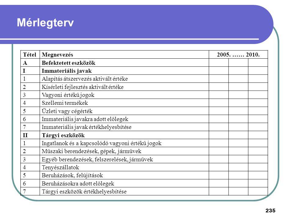 TételMegnevezés2005. …… 2010. ABefektetett eszközök IImmateriális javak 1Alapítás átszervezés aktivált értéke 2Kísérleti fejlesztés aktivált értéke 3V