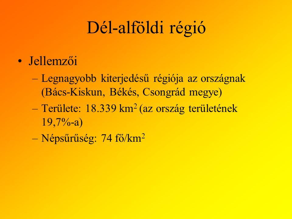 Dél-alföldi régió Jellemzői –Legnagyobb kiterjedésű régiója az országnak (Bács-Kiskun, Békés, Csongrád megye) –Területe: 18.339 km 2 (az ország területének 19,7%-a) –Népsűrűség: 74 fő/km 2