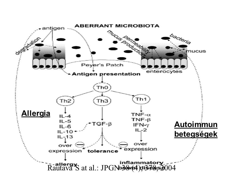 Rautava S at al.: JPGN 38 (4), 378, 2004 Autoimmun betegségek Allergia