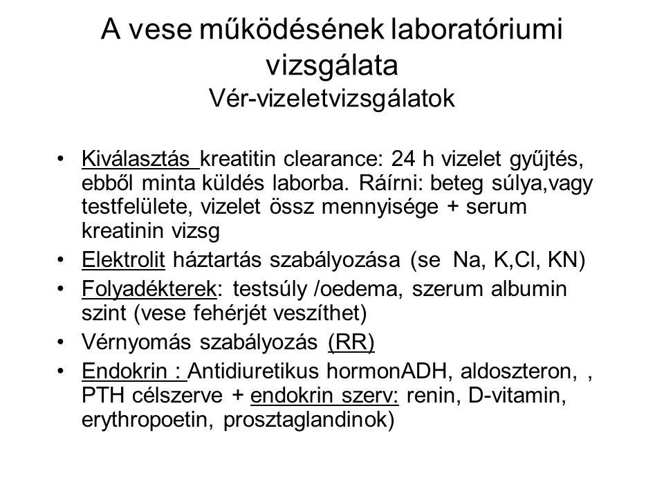 A vese működésének laboratóriumi vizsgálata Vér-vizeletvizsgálatok Kiválasztás kreatitin clearance: 24 h vizelet gyűjtés, ebből minta küldés laborba.