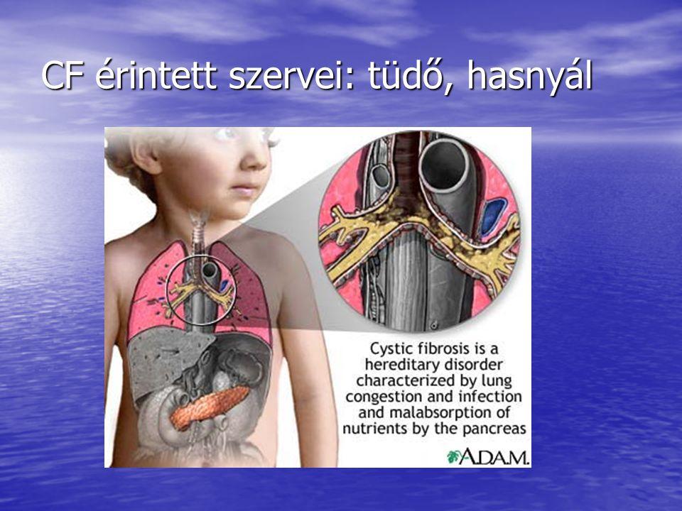 CF érintett szervei: tüdő, hasnyál