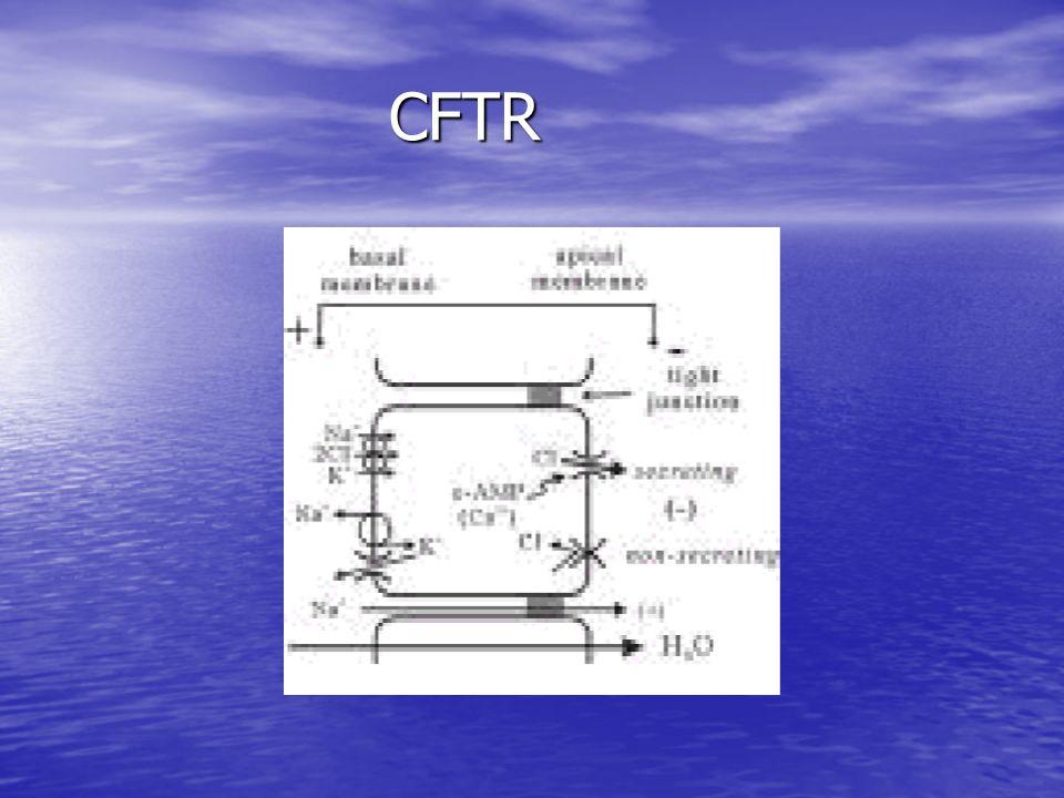 CFTR CFTR