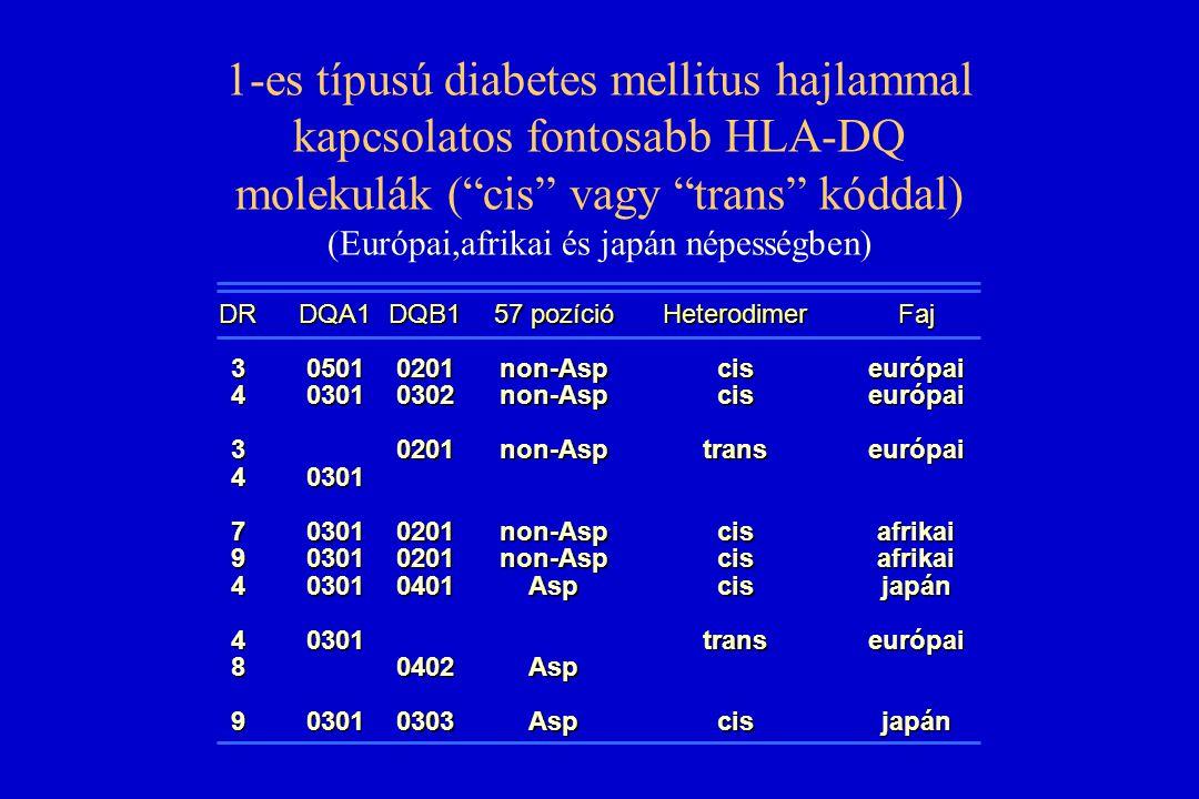 """1-es típusú diabetes mellitus hajlammal kapcsolatos fontosabb HLA-DQ molekulák (""""cis"""" vagy """"trans"""" kóddal) (Európai,afrikai és japán népességben) DR34"""