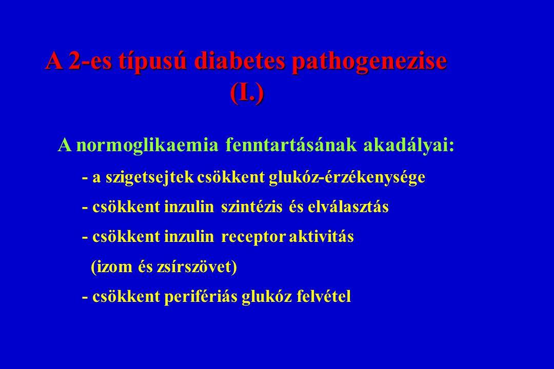 A 2-es típusú diabetes pathogenezise A 2-es típusú diabetes pathogenezise(I.) A normoglikaemia fenntartásának akadályai: - a szigetsejtek csökkent glu