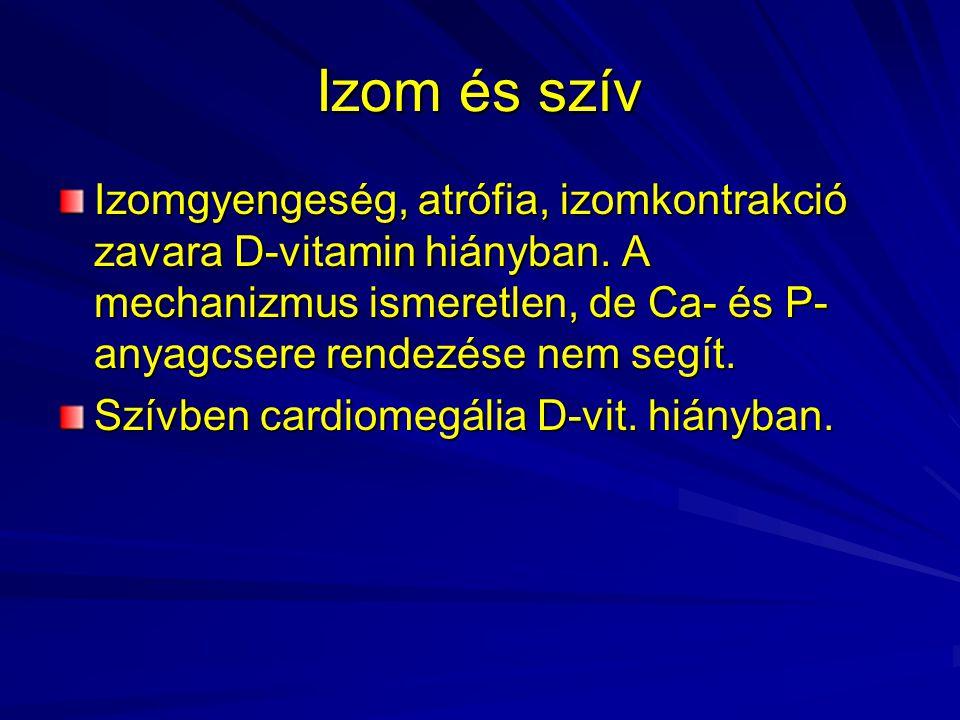 Izom és szív Izomgyengeség, atrófia, izomkontrakció zavara D-vitamin hiányban. A mechanizmus ismeretlen, de Ca- és P- anyagcsere rendezése nem segít.