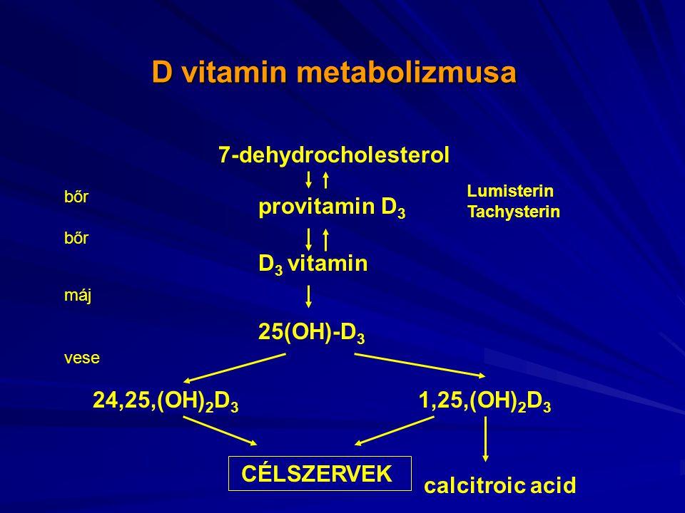 D vitamin metabolizmusa D vitamin metabolizmusa 7-dehydrocholesterol provitamin D 3 D 3 vitamin 25(OH)-D 3 1,25,(OH) 2 D 3 24,25,(OH) 2 D 3 calcitroic