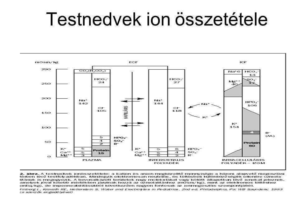 Testnedvek ion összetétele