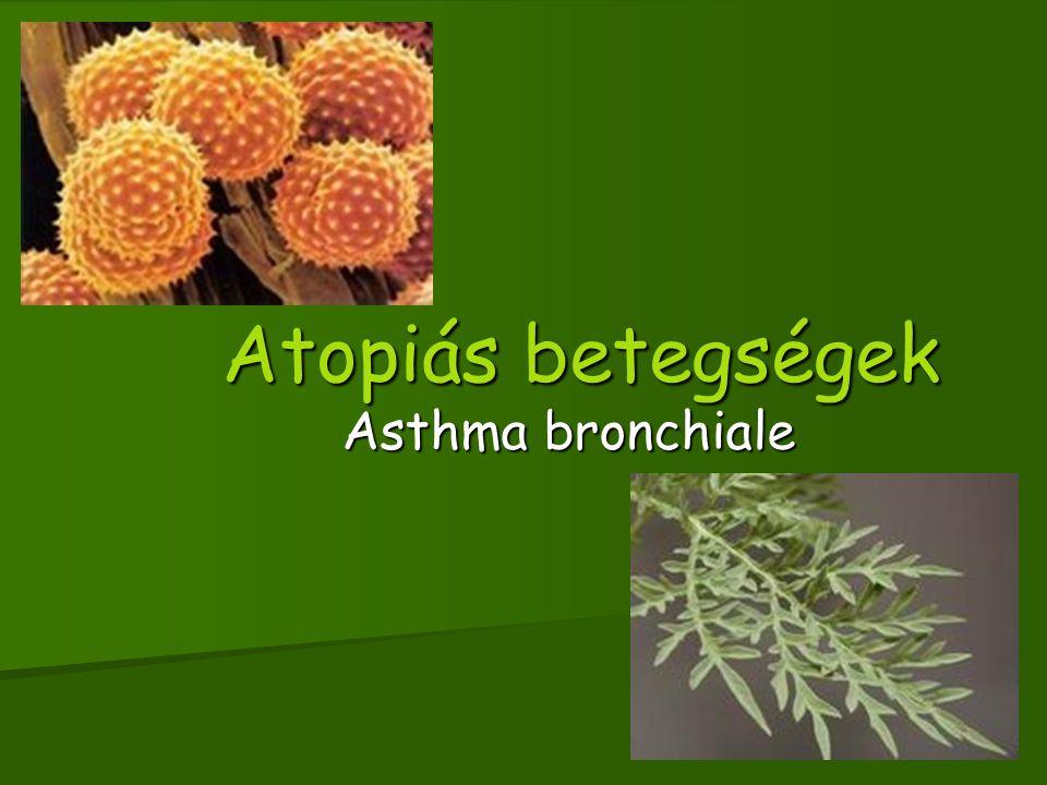 Az asthma pathomechanismusa