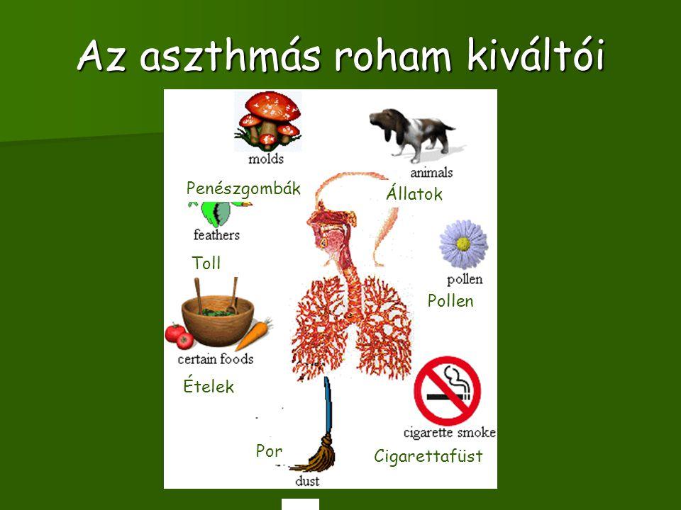 Az aszthmás roham kiváltói Toll Penészgombák Állatok Pollen Cigarettafüst Por 1 Ételek