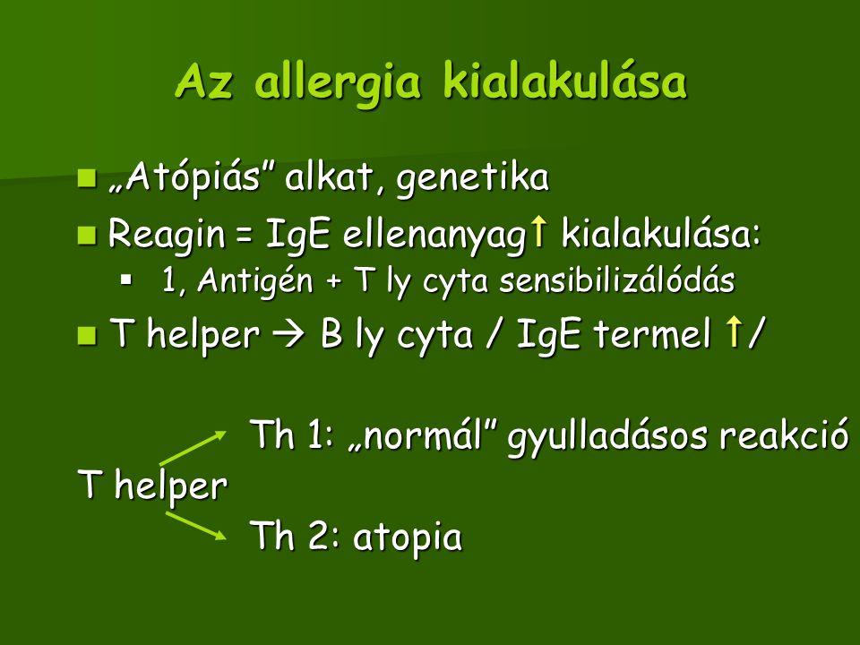 """Az allergia kialakulása """"Atópiás alkat, genetika """"Atópiás alkat, genetika Reagin = IgE ellenanyag  kialakulása: Reagin = IgE ellenanyag  kialakulása:  1, Antigén + T ly cyta sensibilizálódás T helper  B ly cyta / IgE termel  / T helper  B ly cyta / IgE termel  / Th 1: """"normál gyulladásos reakció Th 1: """"normál gyulladásos reakció T helper Th 2: atopia Th 2: atopia"""