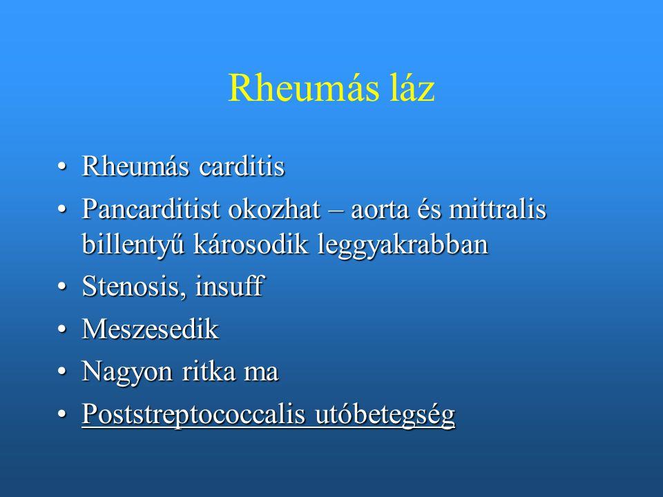 Rheumás láz Rheumás carditisRheumás carditis Pancarditist okozhat – aorta és mittralis billentyű károsodik leggyakrabbanPancarditist okozhat – aorta é
