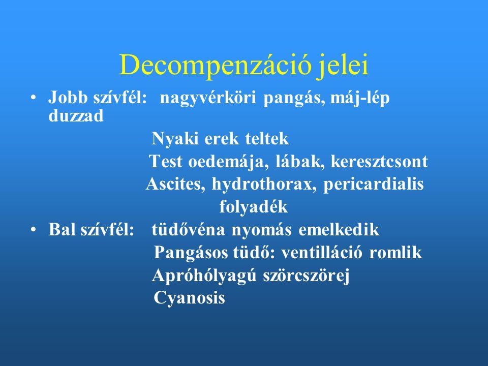 Decompenzáció jelei Jobb szívfél: nagyvérköri pangás, máj-lép duzzad Nyaki erek teltek Test oedemája, lábak, keresztcsont Ascites, hydrothorax, perica