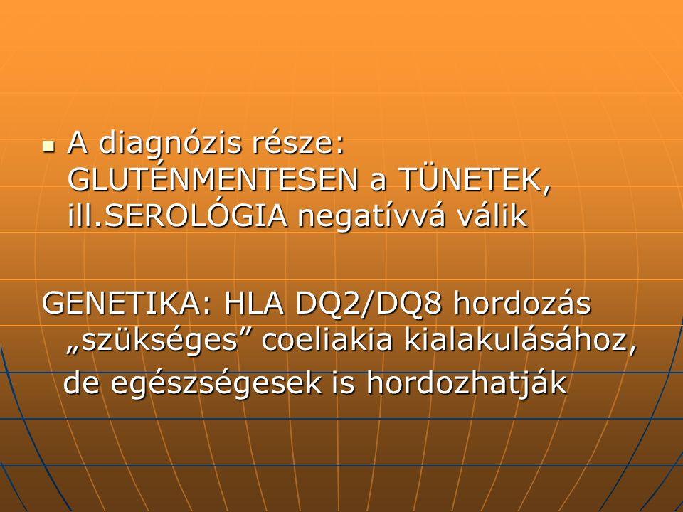A diagnózis része: GLUTÉNMENTESEN a TÜNETEK, ill.SEROLÓGIA negatívvá válik A diagnózis része: GLUTÉNMENTESEN a TÜNETEK, ill.SEROLÓGIA negatívvá válik