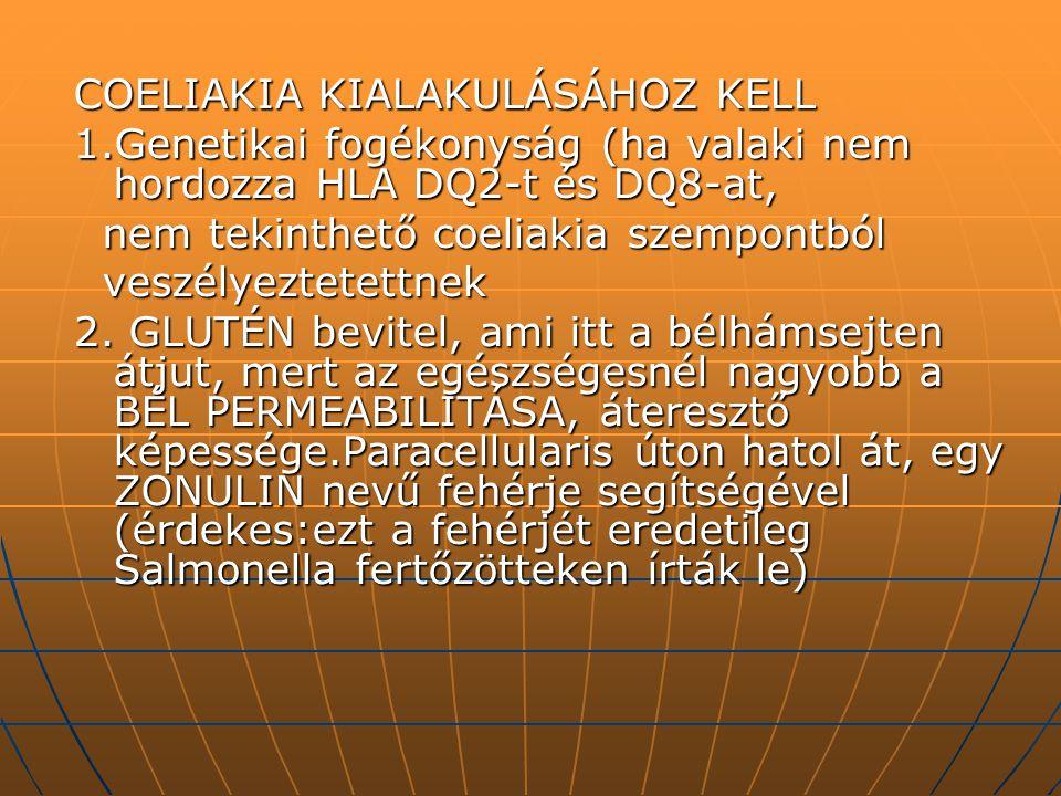 COELIAKIA KIALAKULÁSÁHOZ KELL 1.Genetikai fogékonyság (ha valaki nem hordozza HLA DQ2-t és DQ8-at, nem tekinthető coeliakia szempontból nem tekinthető
