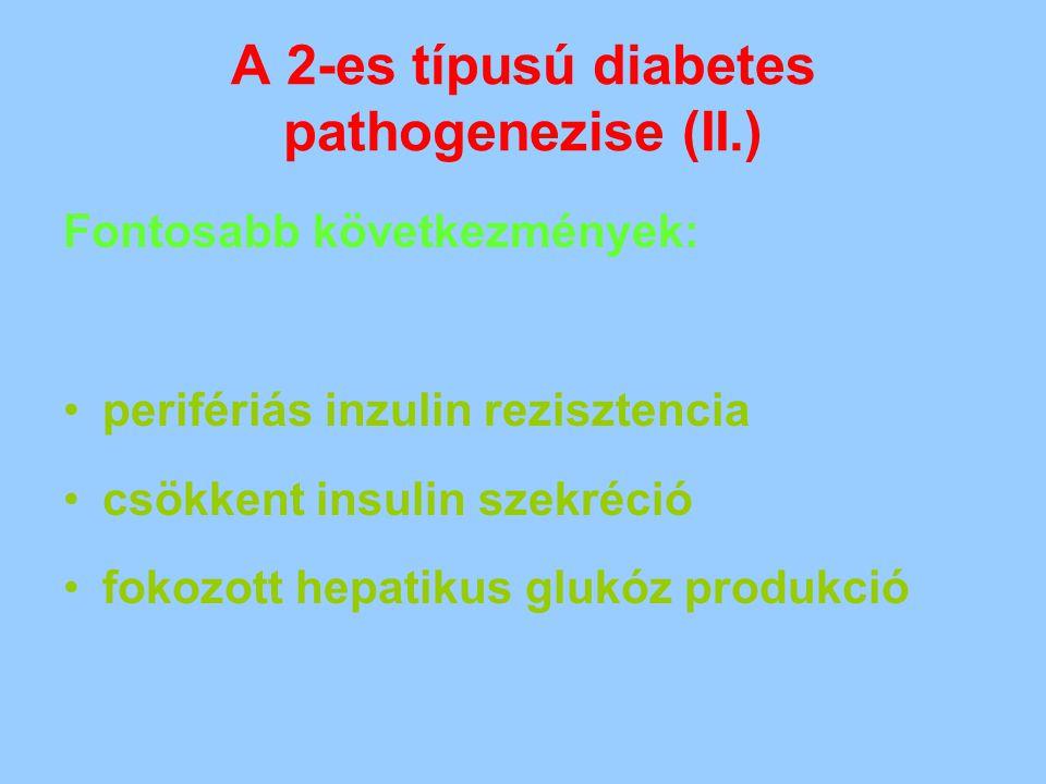A 2-es típusú diabetes pathogenezise (II.) Fontosabb következmények: perifériás inzulin rezisztencia csökkent insulin szekréció fokozott hepatikus glu